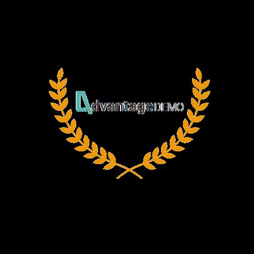 בניית אתרים לחברת Advantage Demo
